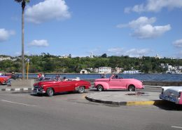 Seitenwechsel: Papiermühle - Havana