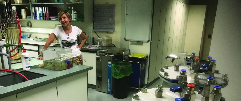 Biomethan aus Industrieabfällen