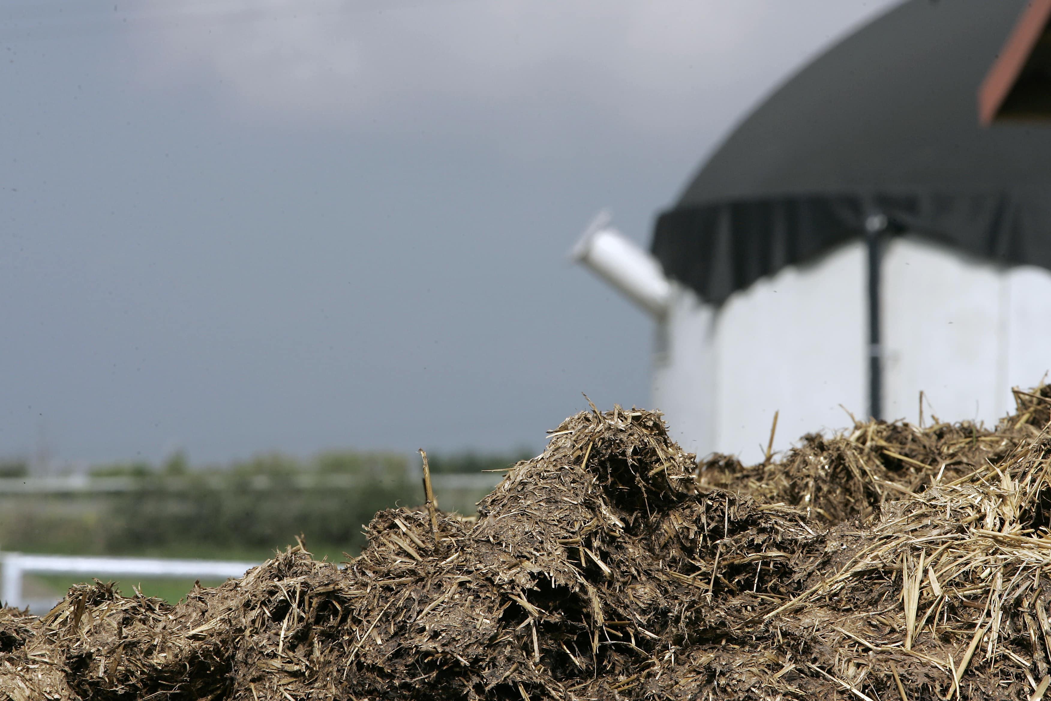 Biomasseanlag mit Hofdünger im Vordergrund