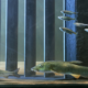 Strom schützt Fische vor Turbinen