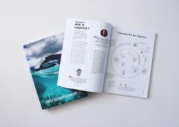 Cleantech Report 2020